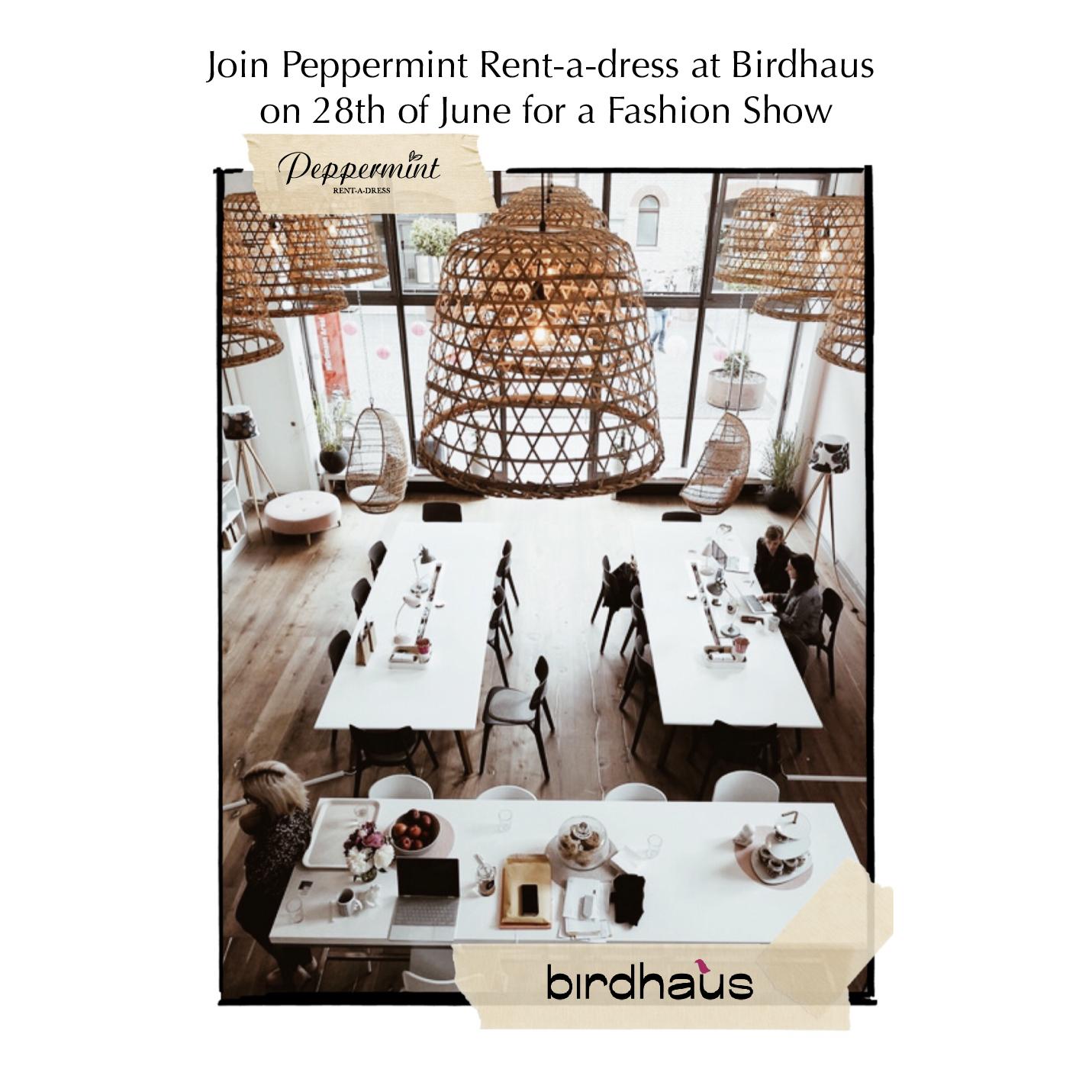 Birdhaus_Event_InstaFeed