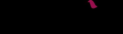 bir_logo-positivo